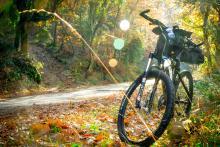 cycling-2846201